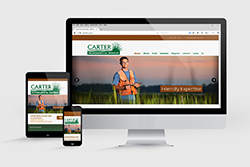 Carter Environmental Services website thumbnail